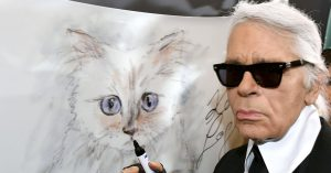 What Happened to Choupette? - The New York Times