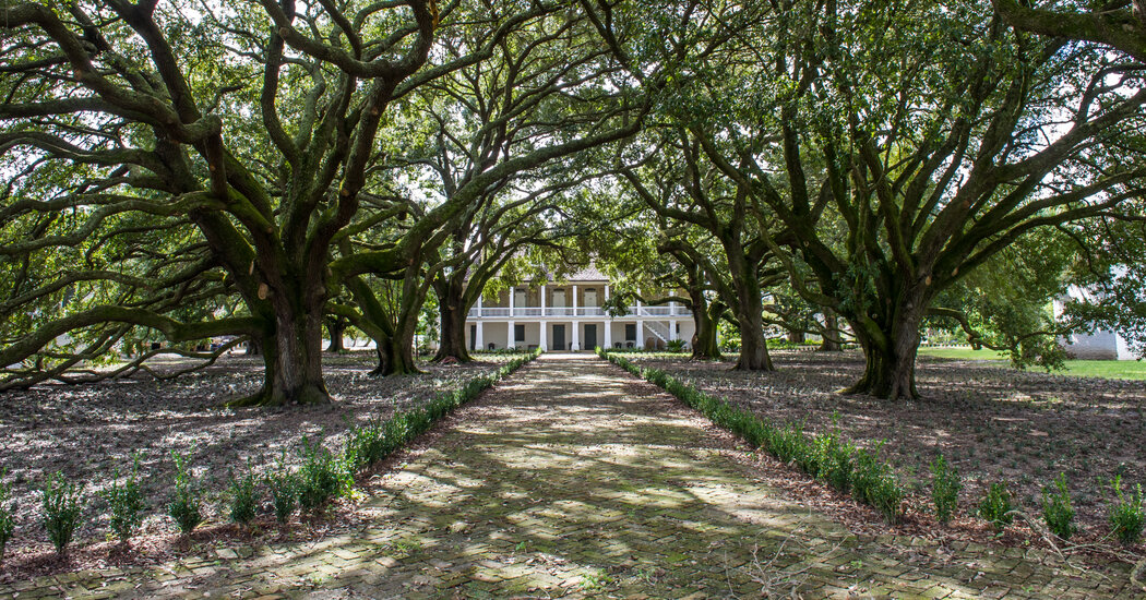 Despite Everything, People Still Have Weddings at 'Plantation' Sites
