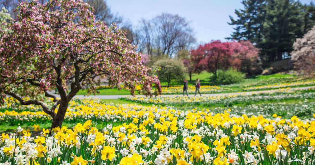 8 Public Gardens From Across the United States