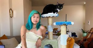 Would You Spend $899 for a Kitty Scratcher?